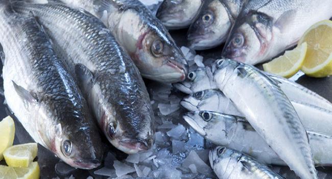 تعليق بيع الاسماك في صفاقس يوم الثلاثاء 15 جانفي