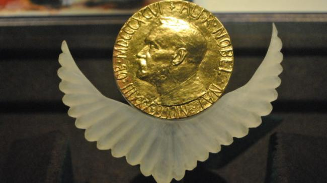عضو مجلس شورى يدعو لترشيح السيسي لجائزة نوبل !