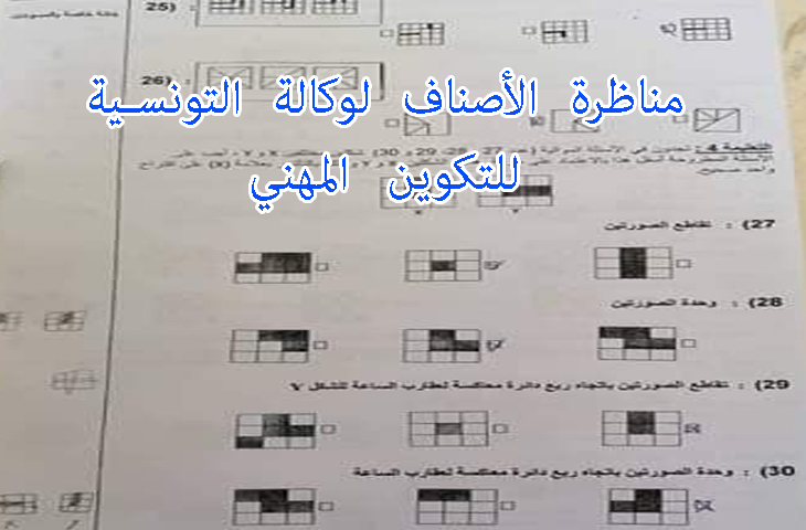 مناظرة الأصناف للوكالة التونسية للتكوين المهني