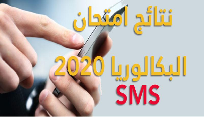 موعد نتائج البكالوريا 2020 تونس الدورة الرئيسية