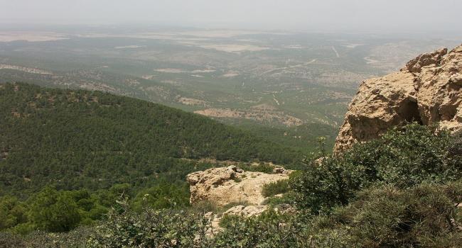 العثور على مخيم جديد للإرهابيين بأحد المرتفعات الجبلية بالقصرين